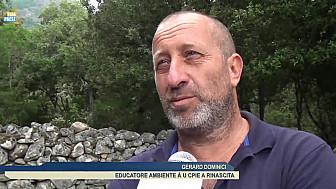 Télé Paese Corsica Éducation : Visite de la forêt de Tizzarella pour les élèves de Munticellu @TelePaese