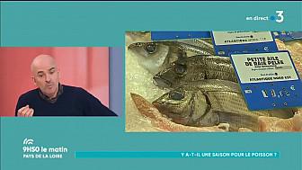 abcd-terroir: Gastronomie & Terroir - Le poisson aussi a ses saisons !