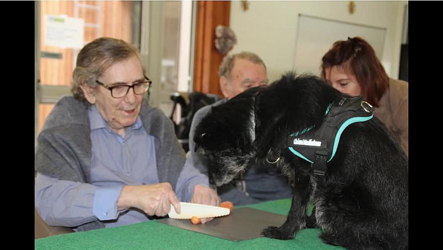 Médiation Animale par l'association AMARA à l'EHPAD de  NONTRON - Dordogne