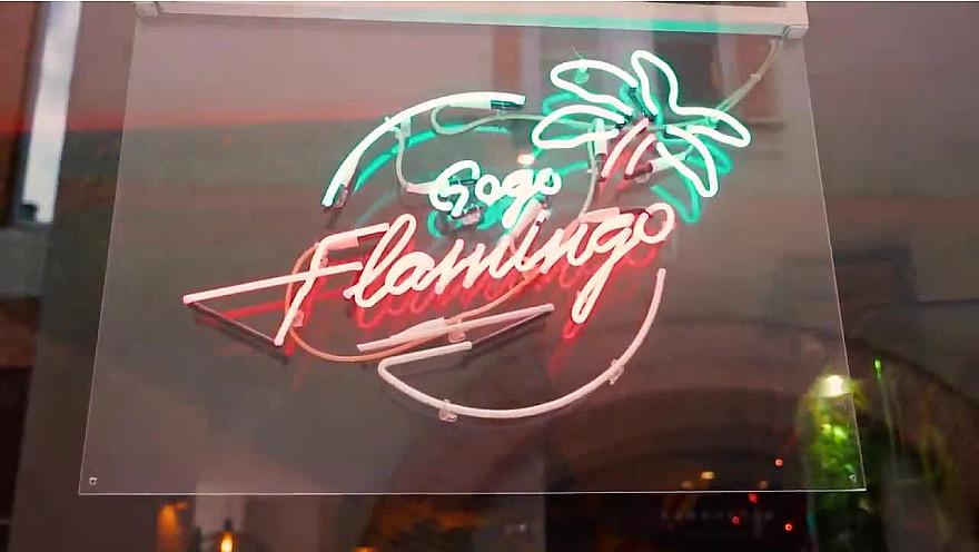 'Demain en Rôse' - Le Gogo Flamingo à @Toulouse